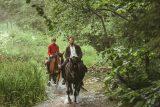 Pferde stehlen_MFA+_Szenenbild 1